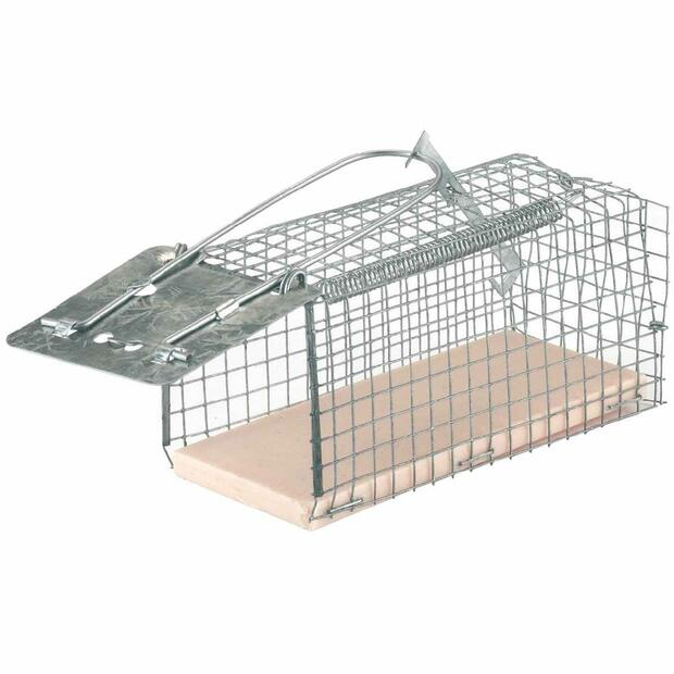 Wire Cage Mouse Trap Alive