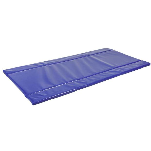 Disinfection mat Standard 180 x 90 x 4 cm