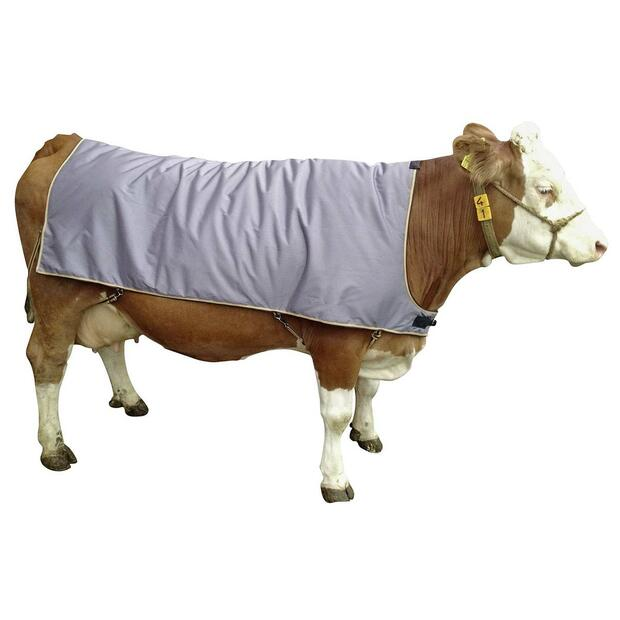 Kerbl Cow blanket for cattle